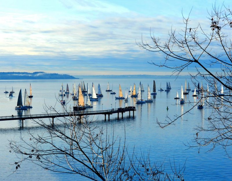 branches-pier-boats-january-race