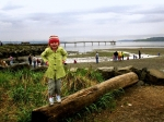 fishing-pier-and-girl-on-beach-log