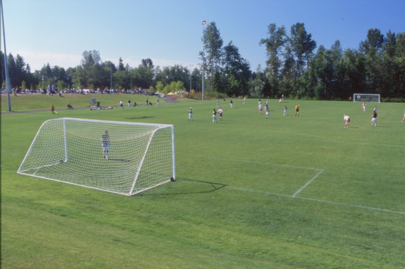federal-way-soccer-field-at-celebration-park