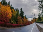 fall-panoramic-newcastle-roads-fixed