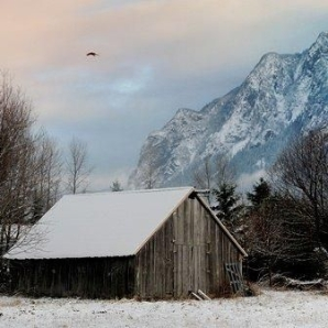 north-bend-shed-bird-mountain-snow