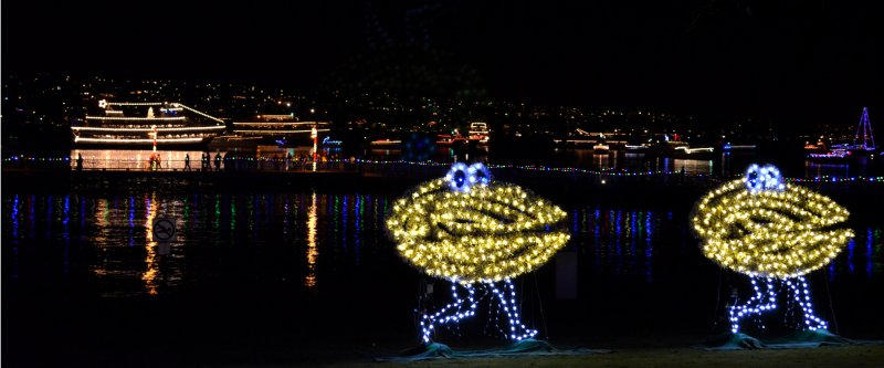 clam-lights_parade-of-ships_0319_6x12