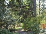 beaux-arts-path