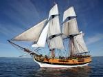 kirkland-tall-ships