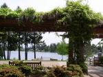 angle-lake-park-arbor