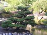 seike-garden-1